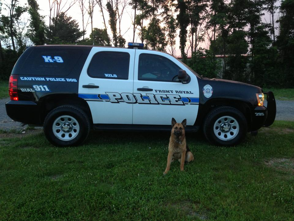 K9 In Front of Police SUV